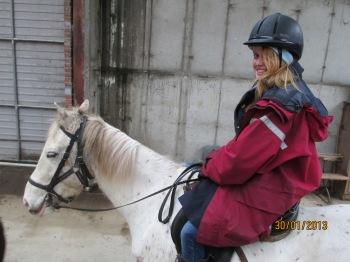 whitney horse